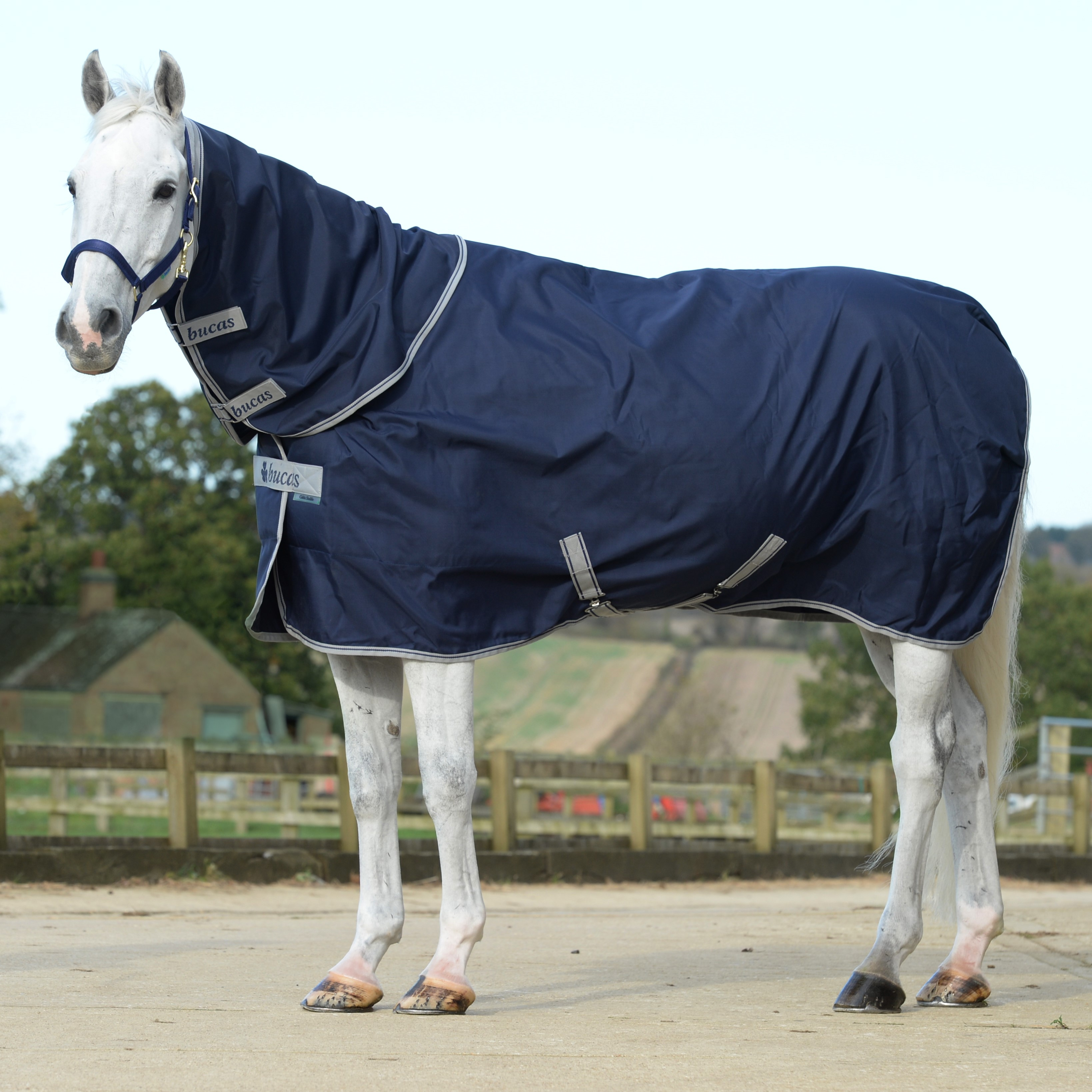 Celtic Stable Combi Neck Navy