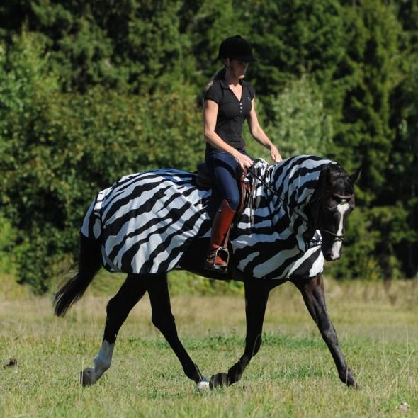 bucas flugtäcke zebra